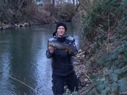 Bachforelle: Beifang beim barsch angeln..