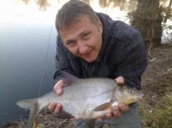 Weißfisch: Brasse
